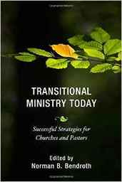 Large transitional ministry