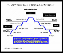 Large life cycle stages cong development