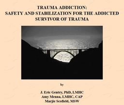 Large trauma addiction