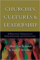 Large churches cultures leadership